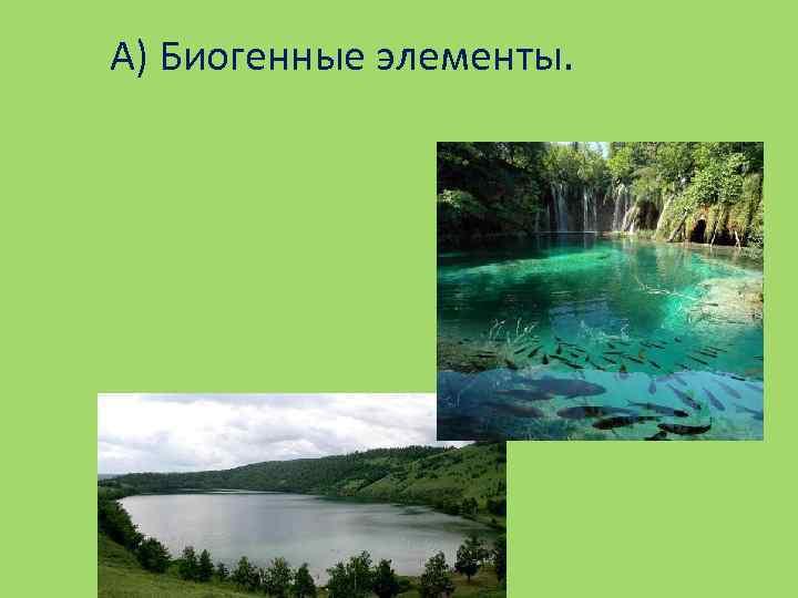 А) Биогенные элементы.