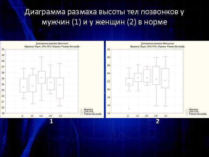 Диаграмма размаха высоты тел позвонков у мужчин (1) и у женщин (2) в норме