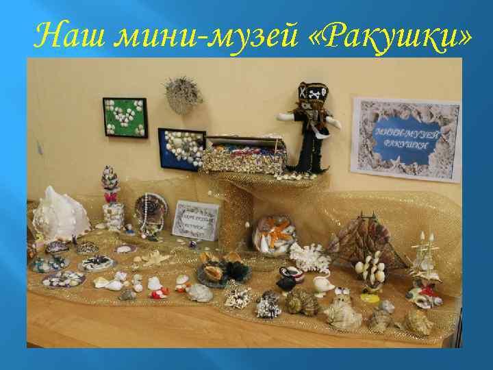 Наш мини-музей «Ракушки»