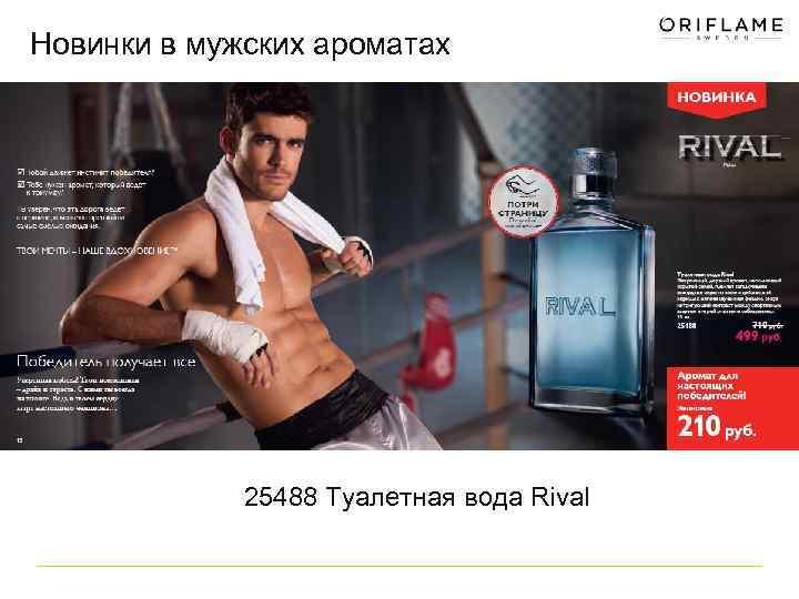 Новинки в мужских ароматах 25488 Туалетная вода Rival