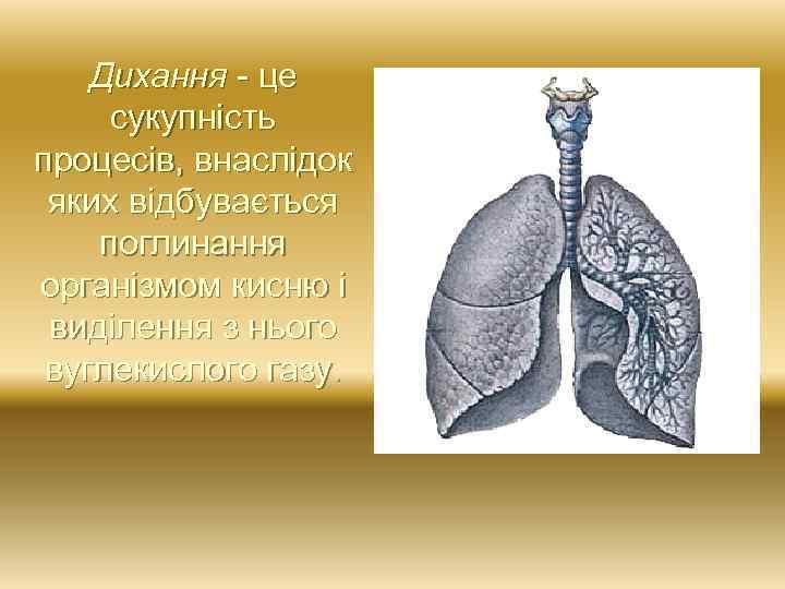 Дихання - це сукупність процесів, внаслідок яких відбувається поглинання організмом кисню і виділення з
