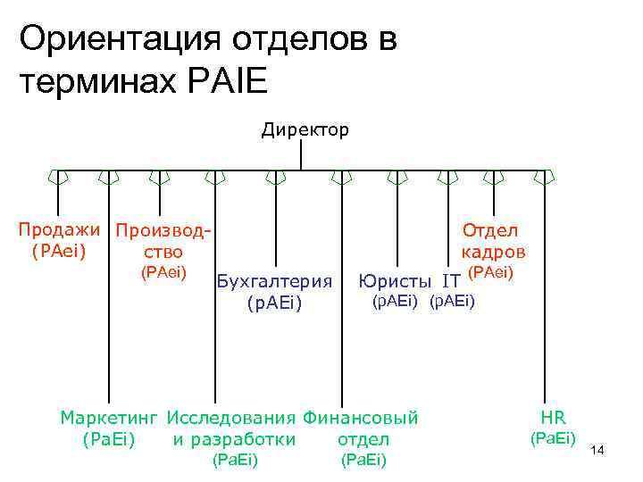 Ориентация отделов в терминах PAIE Директор Продажи Производ(PAei) ство (PAei) Отдел кадров Бухгалтерия (p.