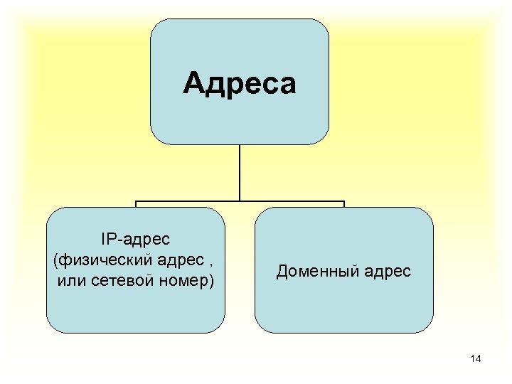 Адреса IP-адрес (физический адрес , или сетевой номер) Доменный адрес 14
