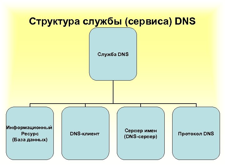 Структура службы (сервиса) DNS Служба DNS Информационный Ресурс (База данных) DNS-клиент Сервер имен (DNS-сервер)