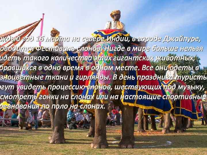 аждый год 16 марта на севере Индии, в городе Джайпуре, роводится Фестиваль слонов. Нигде