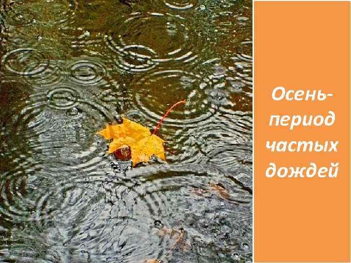Осеньпериод частых дождей