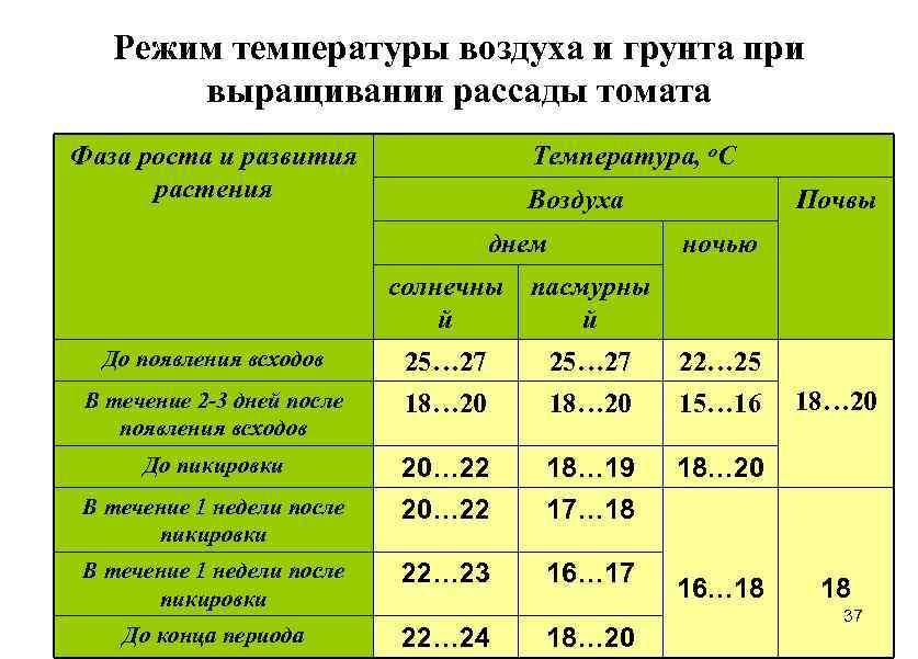 Температура выращивания 15