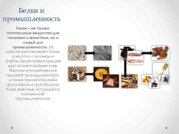 Белки и промышленность Белки – не только питательные вещества для человека и животных, но
