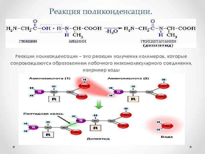 Реакция поликонденсации. Реакции поликонденсации – это реакции получения полимеров, которые сопровождаются образованием побочного низкомолекулярного