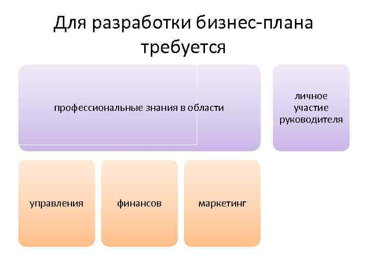 Для разработки бизнес-плана требуется профессиональные знания в области управления финансов маркетинг личное участие руководителя