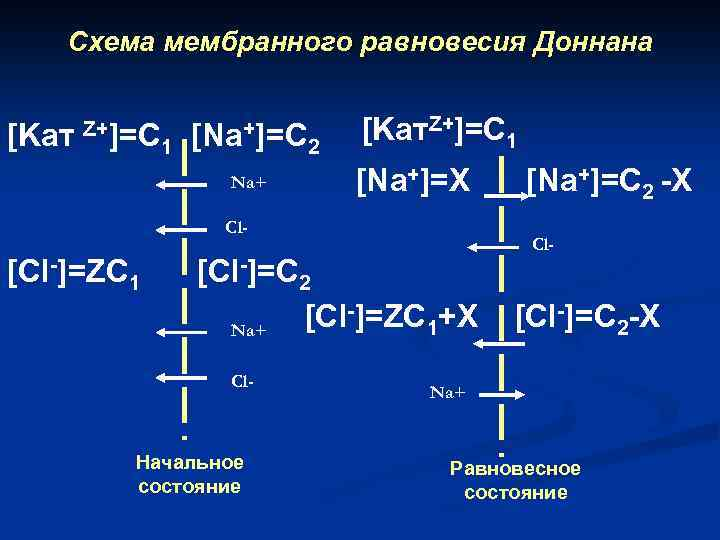 Схема мембранного равновесия Доннана [Kат Z+]=C 1 [Na+]=C Na+ 2 [Kат. Z+]=C 1 [Na+]=X