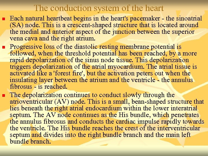 The conduction system of the heart n n n Each natural heartbeat begins in