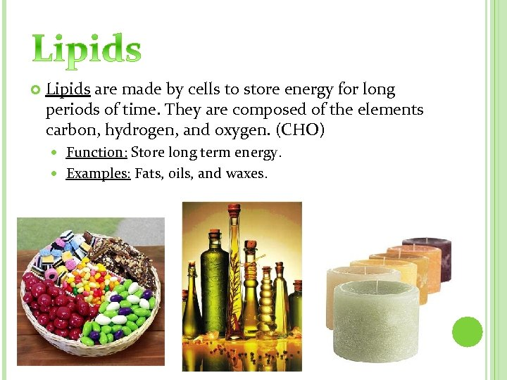 Lipids are made by cells to store energy for long periods of time.