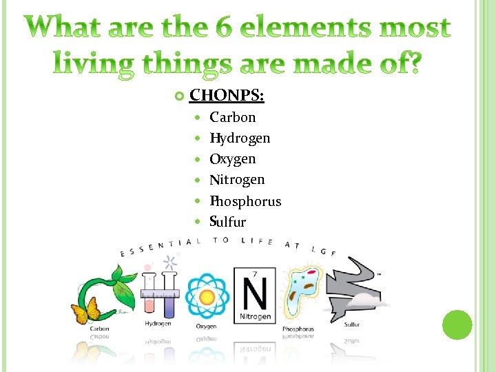 CHONPS: C arbon Hydrogen Oxygen Nitrogen Phosphorus Sulfur