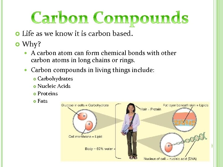 Life as we know it is carbon based. Why? A carbon atom can form