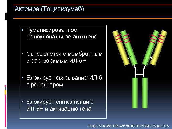 Актемра (Тоцилизумаб) Гуманизированное моноклональное антитело Связывается с мембранным и растворимым ИЛ-6 Р Блокирует связывание