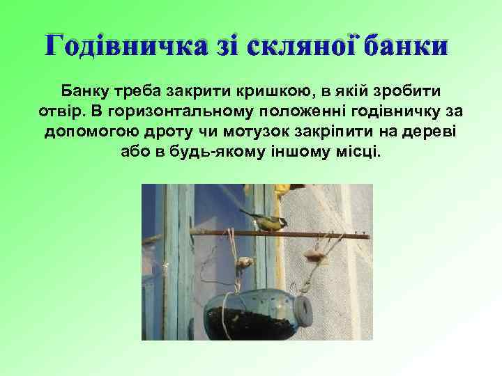 Годівничка зі скляної банки Банку треба закрити кришкою, в якій зробити отвір. В горизонтальному