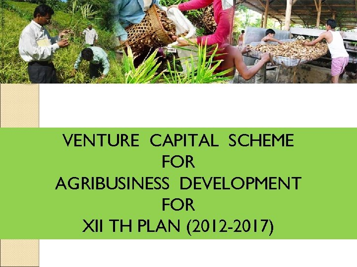 VENTURE CAPITAL SCHEME FOR AGRIBUSINESS DEVELOPMENT FOR XII TH PLAN (2012 -2017)