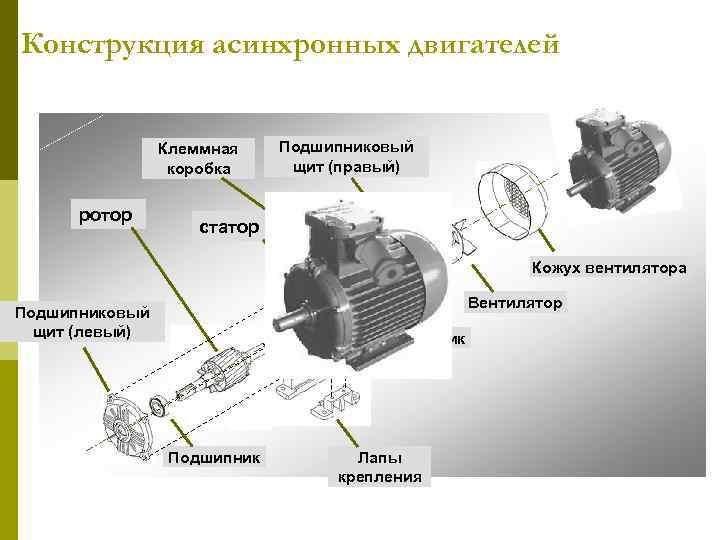 Конструкция асинхронных двигателей Клеммная коробка ротор Подшипниковый щит (правый) статор Кожух вентилятора Вентилятор Подшипниковый