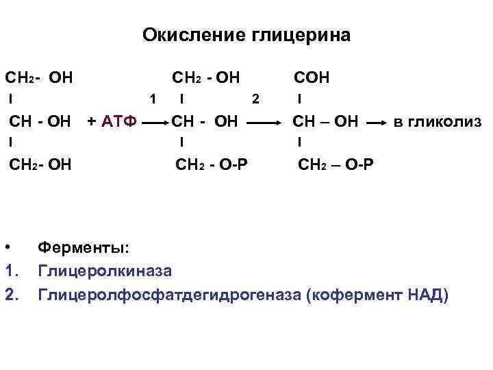 Окисление глицерина СН 2 - ОН I 1 СН - ОН + АТФ I