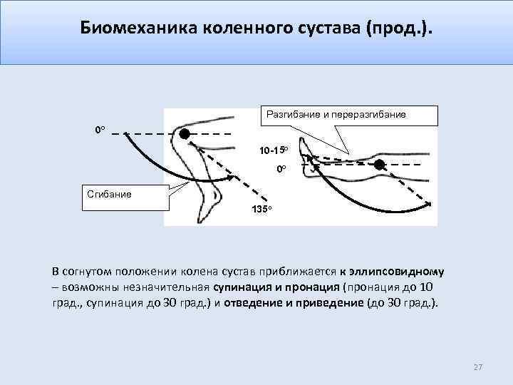 Биомеханика коленного сустава (прод. ). Разгибание и переразгибание 0 о 10 -15 о 0