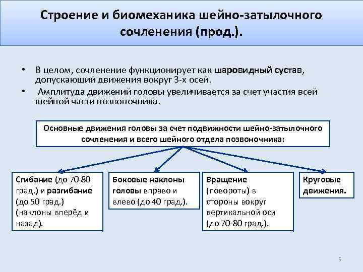 Строение и биомеханика шейно-затылочного сочленения (прод. ). • В целом, сочленение функционирует как шаровидный