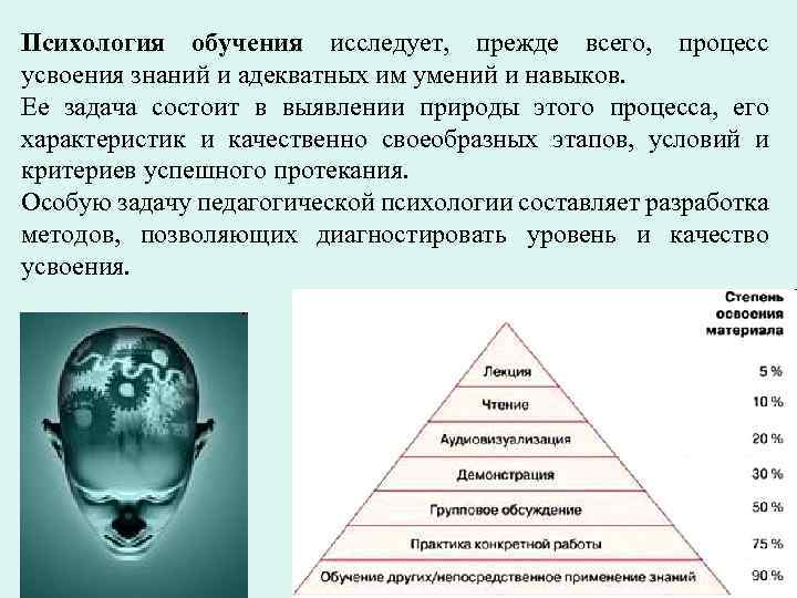 Психология обучения исследует, прежде всего, процесс усвоения знаний и адекватных им умений и навыков.