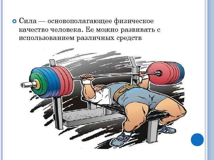 Сила — основополагающее физическое качество человека. Ее можно развивать с использованием различных средств