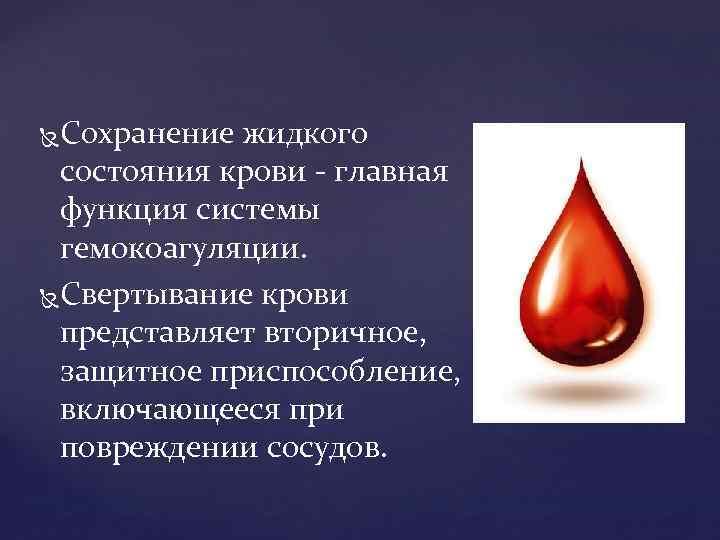 Сохранение жидкого состояния крови главная функция системы гемокоагуляции. Свертывание крови представляет вторичное, защитное приспособление,