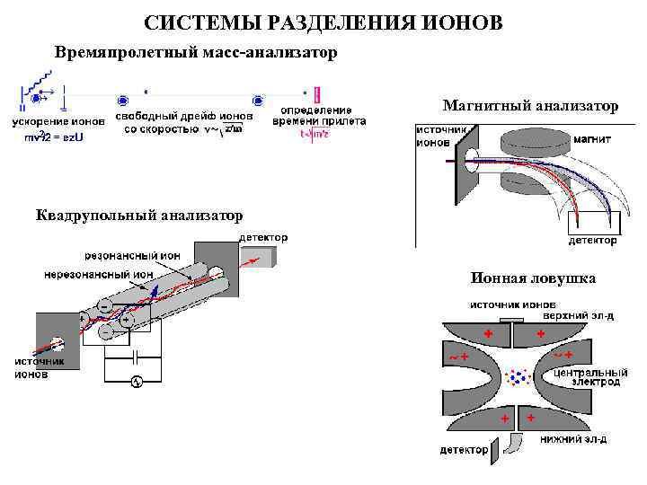 СИСТЕМЫ РАЗДЕЛЕНИЯ ИОНОВ Времяпролетный масс-анализатор Магнитный анализатор Квадрупольный анализатор Ионная ловушка