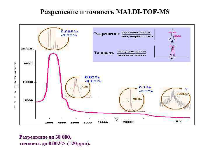 Разрешение и точность MALDI-TOF-MS р а з р е ш е н и е