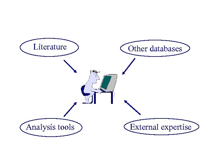 Literature Analysis tools Other databases External expertise
