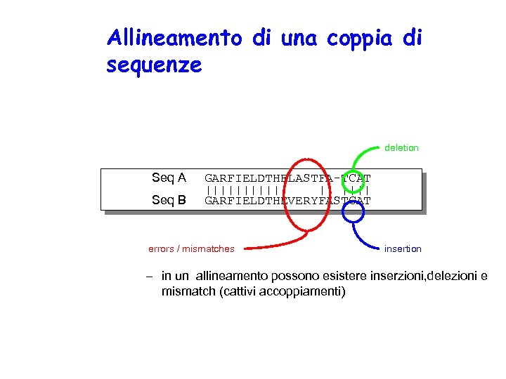 Allineamento di una coppia di sequenze deletion Seq A Seq B GARFIELDTHELASTFA-TCAT |||||| ||