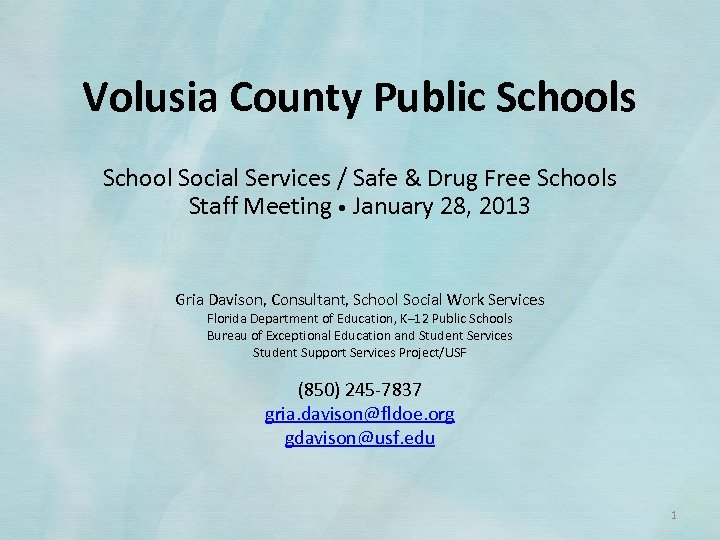 Volusia County Public Schools School Social Services / Safe & Drug Free Schools Staff