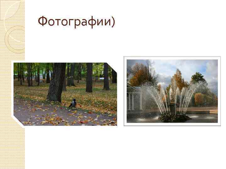 Фотографии)