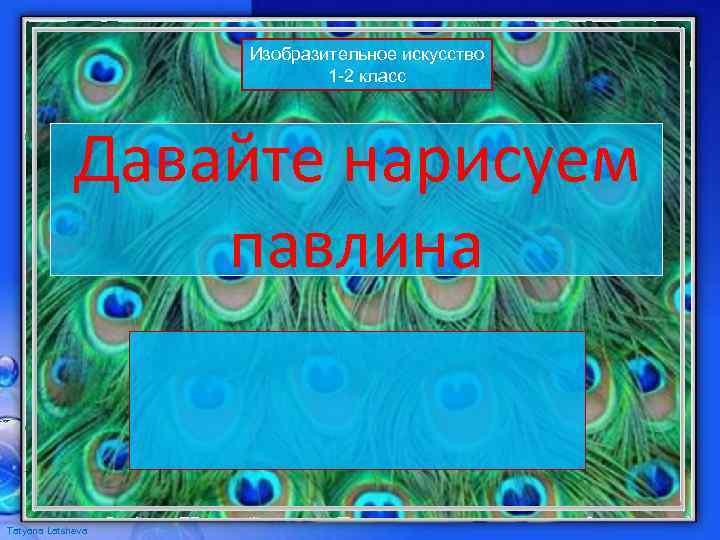 Изобразительное искусство 1 -2 класс Давайте нарисуем павлина Tatyana Latsheva
