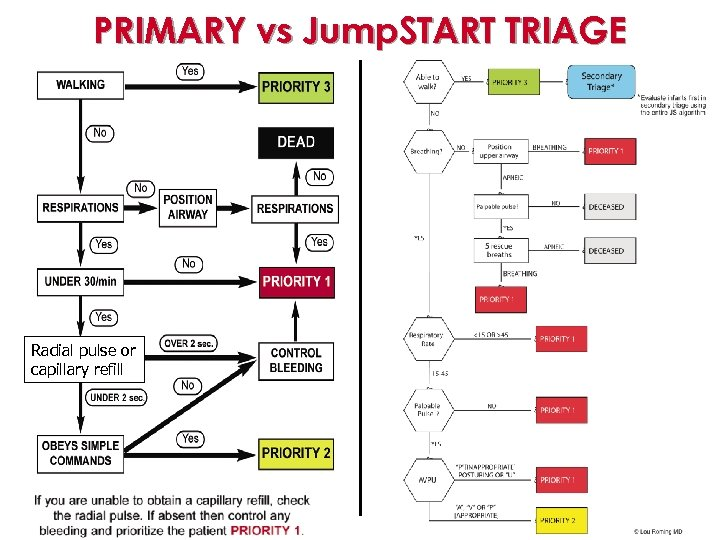 PRIMARY vs Jump. START TRIAGE Radial pulse or capillary refill