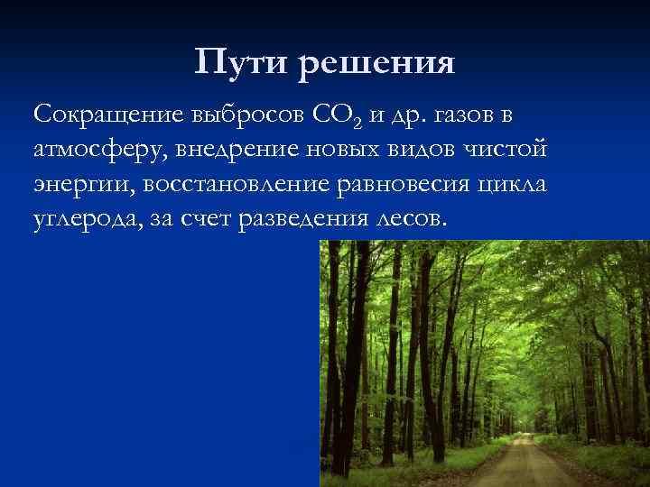 Пути решения Сокращение выбросов СО 2 и др. газов в атмосферу, внедрение новых видов