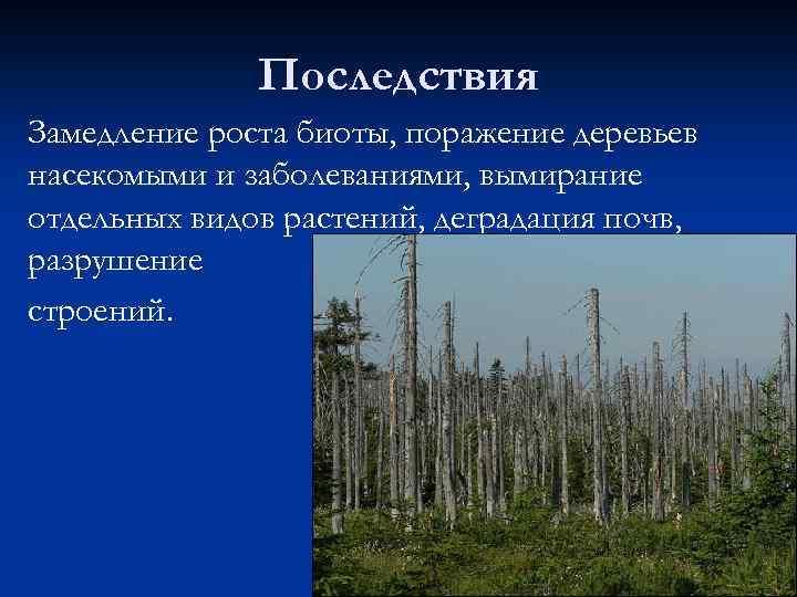 Последствия Замедление роста биоты, поражение деревьев насекомыми и заболеваниями, вымирание отдельных видов растений, деградация