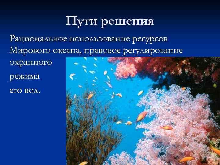 Пути решения Рациональное использование ресурсов Мирового океана, правовое регулирование охранного режима его вод.
