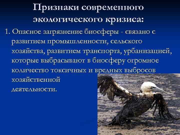 Признаки современного экологического кризиса: 1. Опасное загрязнение биосферы - связано с развитием промышленности, сельского