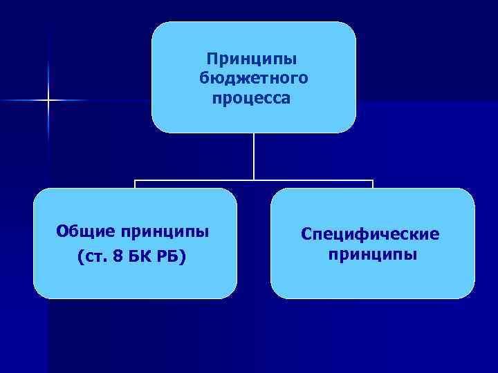 Принципы бюджетного процесса Общие принципы (ст. 8 БК РБ) Специфические принципы