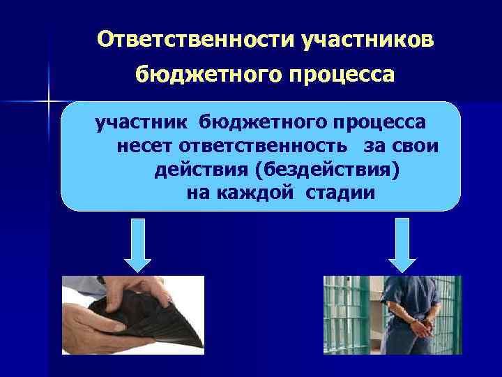 Ответственности участников бюджетного процесса участник бюджетного процесса несет ответственность за свои действия (бездействия) на