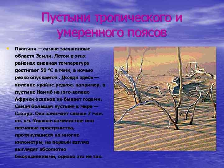 Пустыни тропического и умеренного поясов • Пустыни — самые засушливые области Земли. Летом в