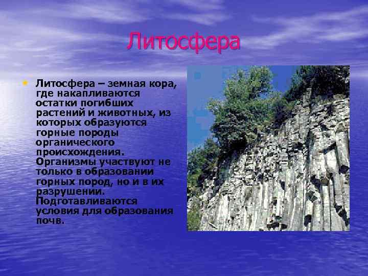 Литосфера • Литосфера – земная кора, где накапливаются остатки погибших растений и животных, из