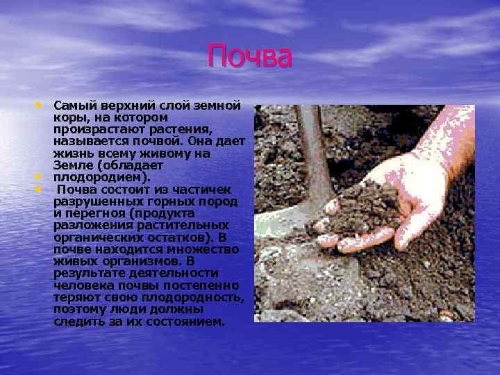 Почва • Самый верхний слой земной • • коры, на котором произрастают растения, называется