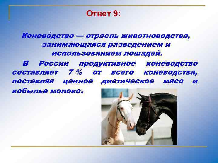 Ответ 9: Конево дство — отрасль животноводства, занимающаяся разведением и использованием лошадей. В России