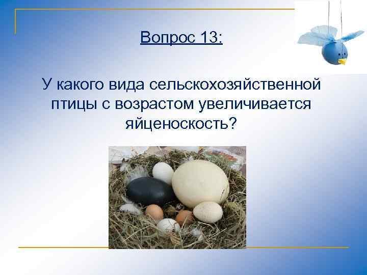 Вопрос 13: У какого вида сельскохозяйственной птицы с возрастом увеличивается яйценоскость?