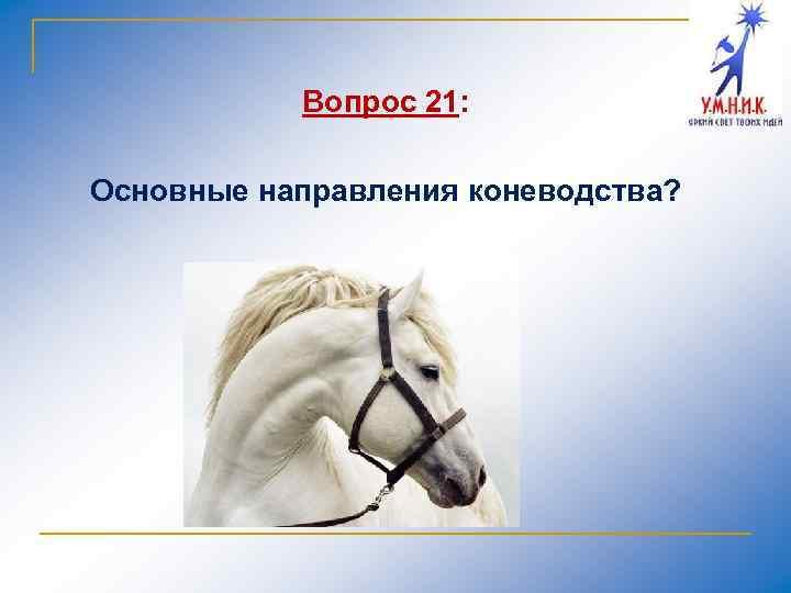 Вопрос 21: Основные направления коневодства?