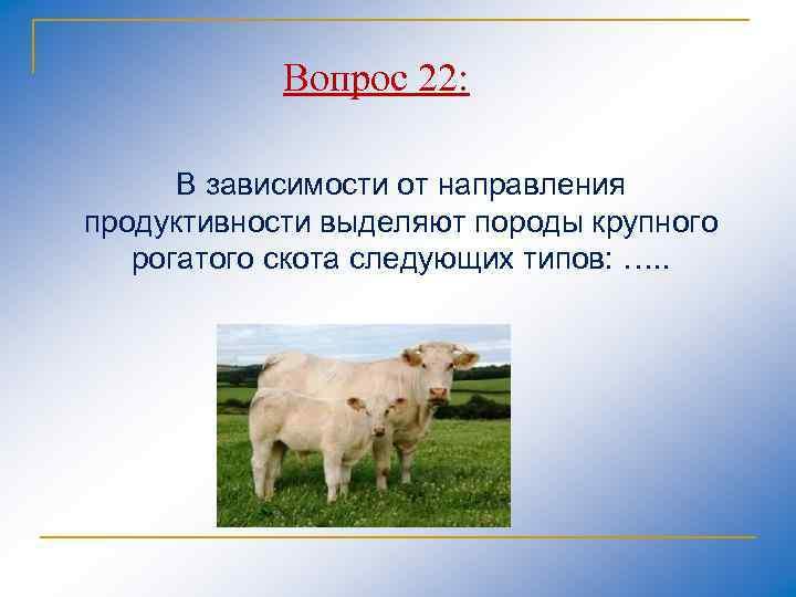 Вопрос 22: В зависимости от направления продуктивности выделяют породы крупного рогатого скота следующих типов: